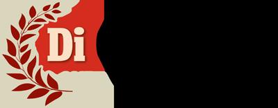 Vinnare DI-gasellen 2017